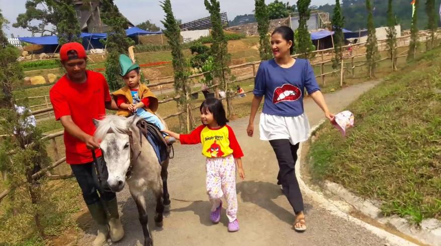 Rekomendasi Tempat Wisata Hewan Anak yang Menarik Dikunjungi