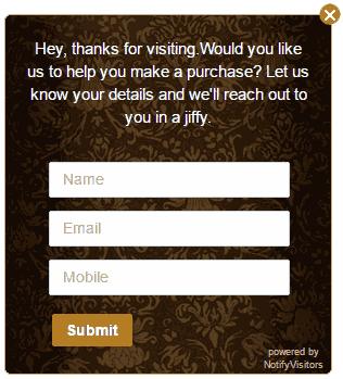 NotifyVisitors-survey-theme-28