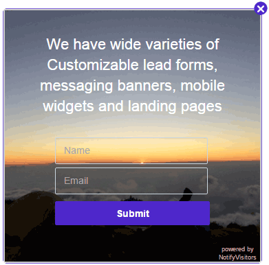 NotifyVisitors-survey-theme-9