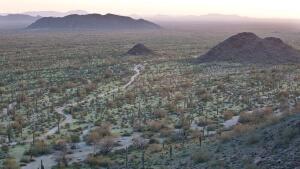 trump renieva amenaza de cerrar la frontera