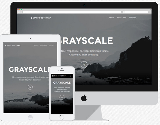 grayscale theme