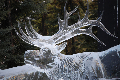 multi-block realistic deer Ice Sculpture