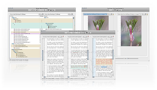 Araxis Merge three-way document comparison
