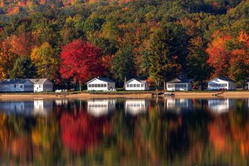reflections of trees and houses on a lake