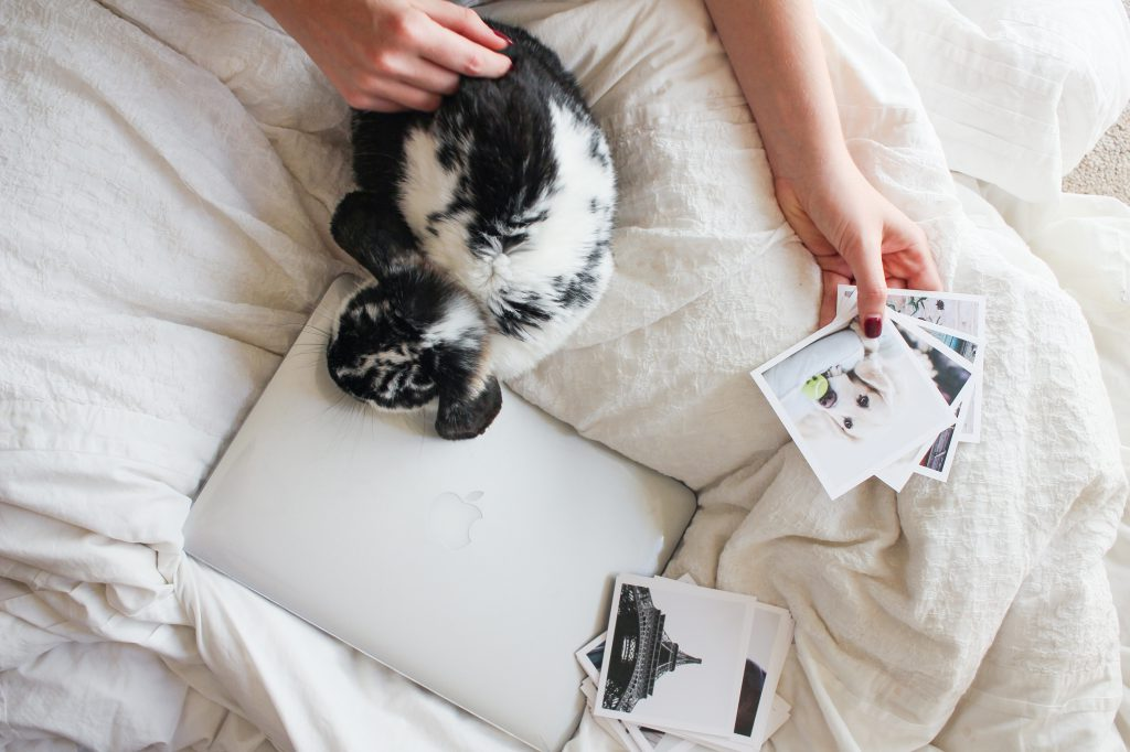 Photo prints on bed