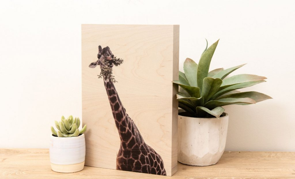 Giraffe on wood print