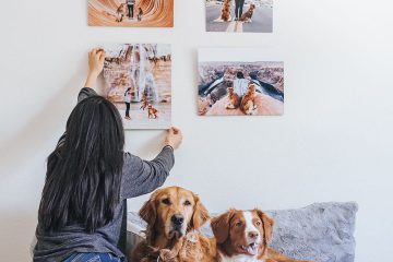 gallery wall of pet photos