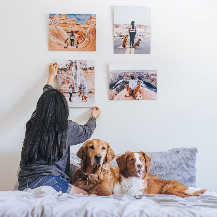 Photo Gifts for the Pet Lovers in Your Life