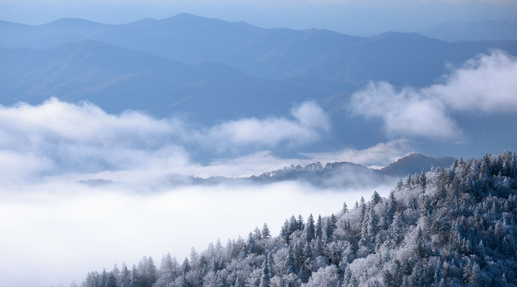 Great Smoky Mountain Vacation Cabin Rentals