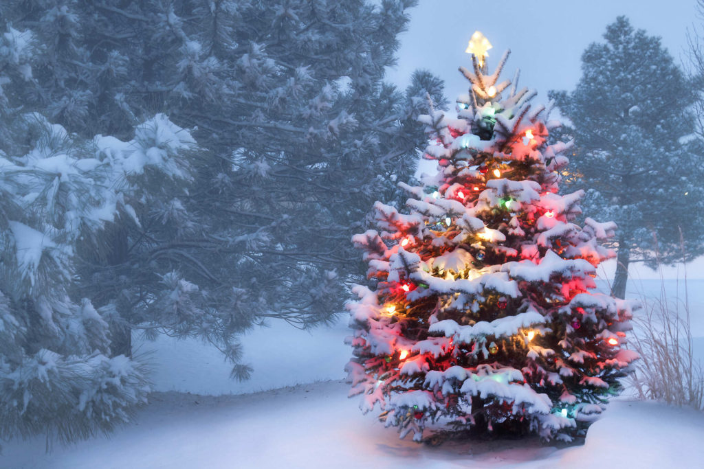 Christmas – Holiday Season HD Wallpapers