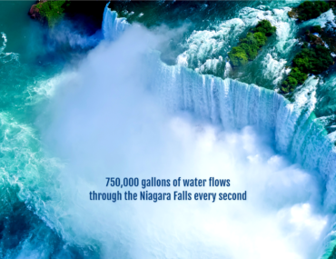 Did You Know? nature