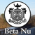 Beta Nu Chapter of STTI