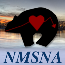 New mexico school nurses avatar