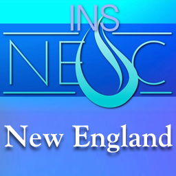 New england ins avatar
