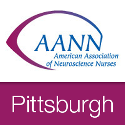Aann pittsburgh avatar