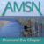AMSN Diamond Bay Chapter