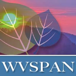 Wvspan avatar