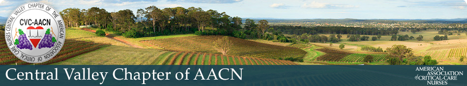 Aacn banner final