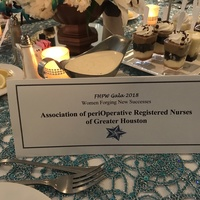 FHPW Woman of Excellence Gala 2018