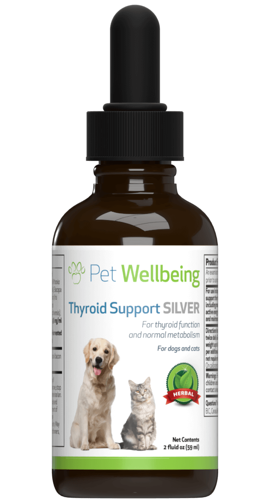 Thyroid Support Silver for Dogs' Healthy Energy, Coat and Weight