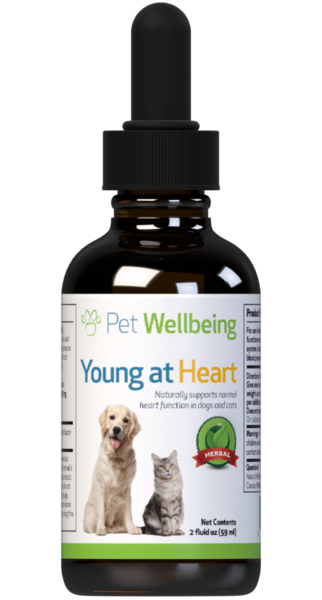 Young at Heart for Dog Heart Support