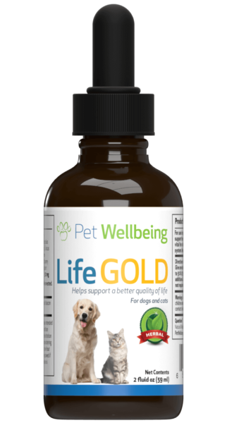 Cat Cancer Support - Life Gold by Pet Wellbeing