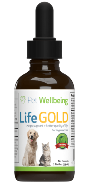 Dog Cancer Support – Life Gold by Pet Wellbeing