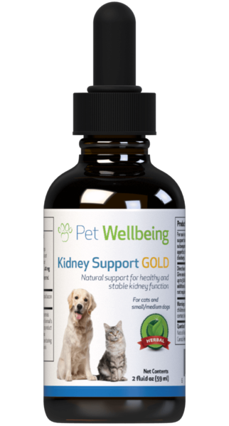 Kidney Support Gold - Cat Kidney Disease Support  by Pet Wellbeing