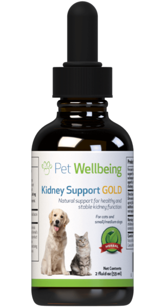 Kidney Support Gold – Maintains Healthy Kidney Function In Dogs by Pet Wellbeing
