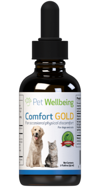 Comfort Gold – Cat Pain Support by Pet Wellbeing