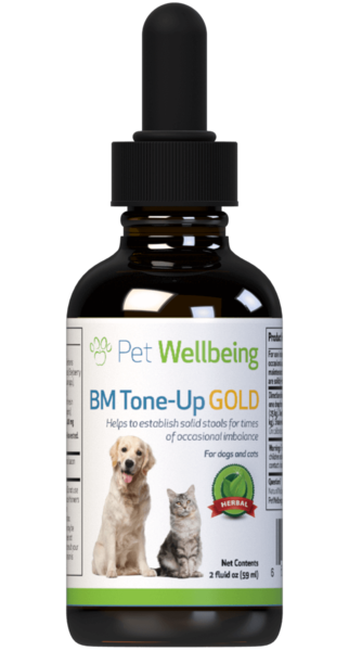 BM Tone-Up Gold - Dog Diarrhea Support by Pet Wellbeing
