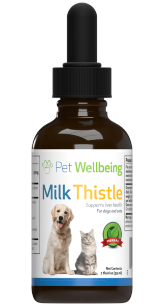 Milk Thistle for Cat Liver Disease by Pet Wellbeing