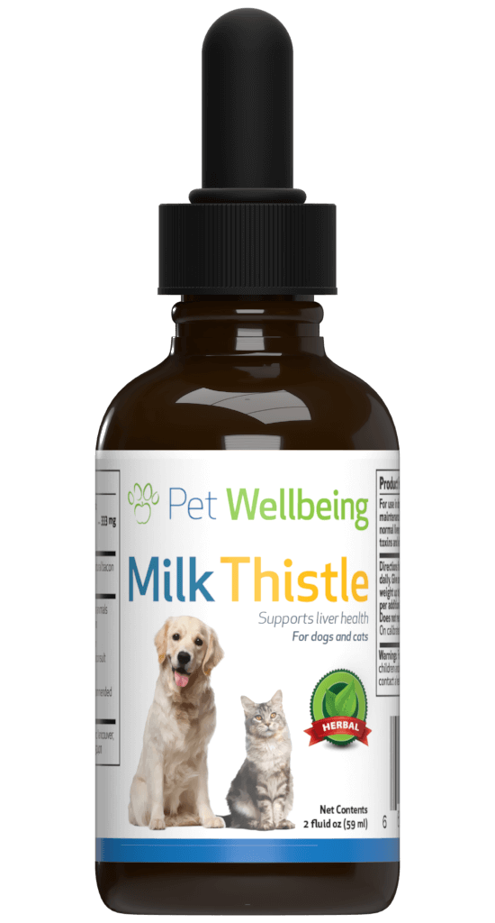 Milk Thistle for Cat Liver Disease