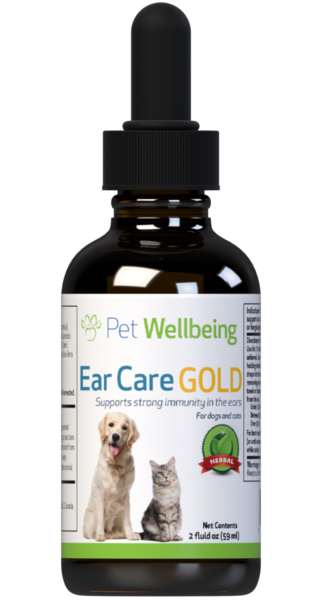 Natural Dog Ear Infection Remedy – Ear Care Gold