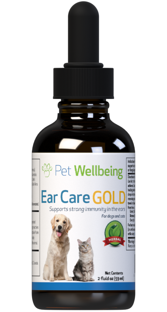 Ear Care Gold for a Natural Solution to Cat Ear Comfort