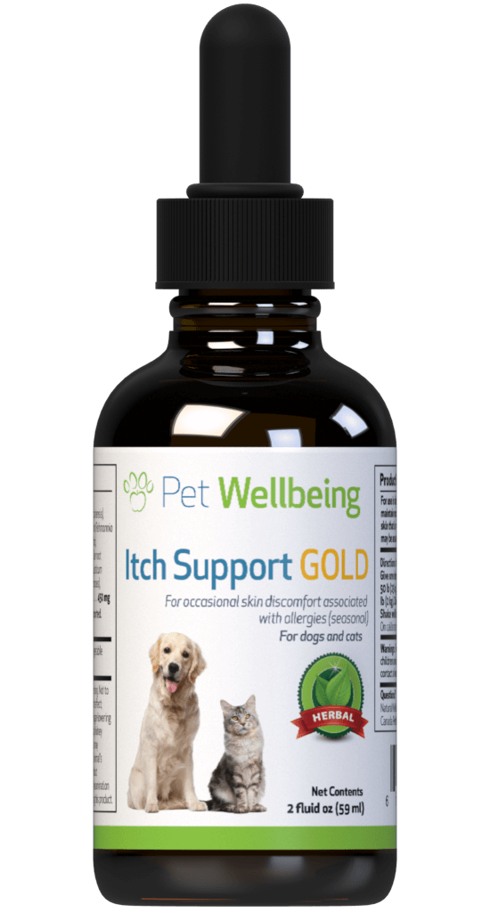 Itch Support Gold for Dogs