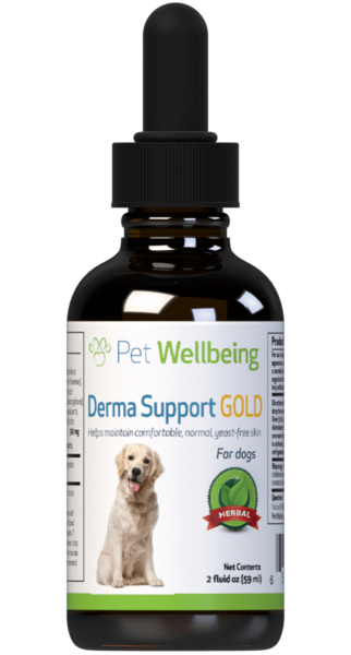 Derma Support Gold for Dogs by Pet Wellbeing