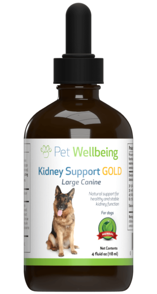 Kidney Support Gold - Maintains Healthy Kidney Function In Dogs by Pet Wellbeing