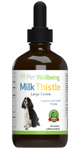 Milk Thistle for Dog Liver Disease by Pet Wellbeing