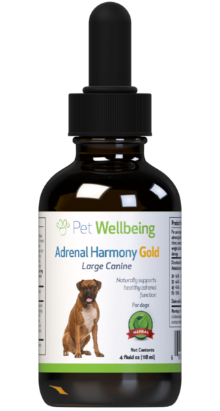 Adrenal Harmony Gold for Dog Cushings by Pet Wellbeing