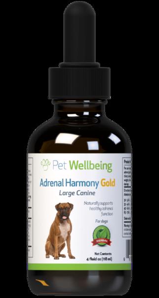 Adrenal Harmony Gold for Dog Cushings