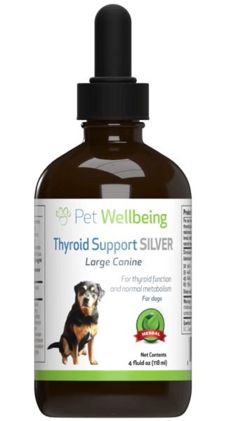 Thyroid Support Silver for Dog Hypothyroidism by Pet Wellbeing