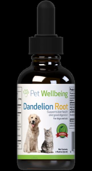 Dandelion Root for Dog Liver Support