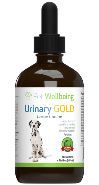 Urinary Gold for Canine Urinary Tract Health by Pet Wellbeing