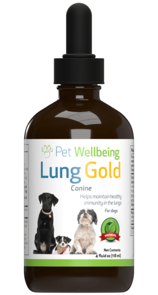 Lung Gold for dog lung infections and easy breathing by Pet Wellbeing