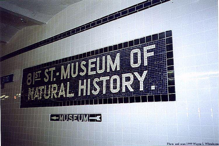(83k, 750x498)<br><b>Country:</b> United States<br><b>City:</b> New York<br><b>System:</b> New York City Transit<br><b>Line:</b> IND 8th Avenue Line<br><b>Location:</b> 81st Street/Museum of Natural History <br><b>Photo by:</b> Wayne Whitehorne<br><b>Date:</b> 5/29/1999<br><b>Notes:</b> Wall name tablet<br><b>Viewed (this week/total):</b> 0 / 9270