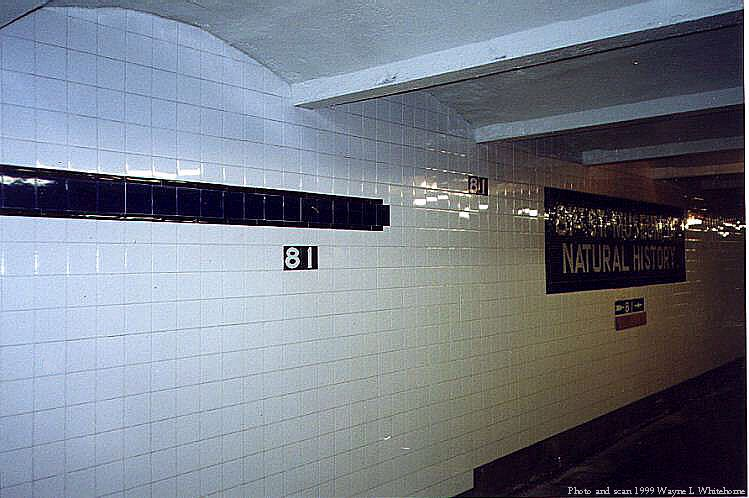 (63k, 749x498)<br><b>Country:</b> United States<br><b>City:</b> New York<br><b>System:</b> New York City Transit<br><b>Line:</b> IND 8th Avenue Line<br><b>Location:</b> 81st Street/Museum of Natural History <br><b>Photo by:</b> Wayne Whitehorne<br><b>Date:</b> 5/29/1999<br><b>Notes:</b> Nnew wall tile<br><b>Viewed (this week/total):</b> 0 / 9430