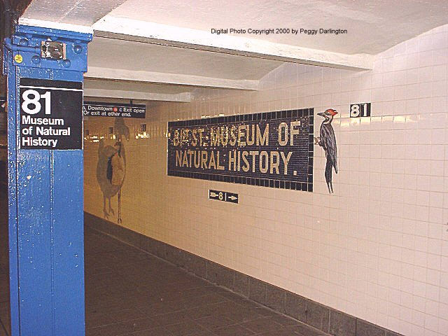 (76k, 640x480)<br><b>Country:</b> United States<br><b>City:</b> New York<br><b>System:</b> New York City Transit<br><b>Line:</b> IND 8th Avenue Line<br><b>Location:</b> 81st Street/Museum of Natural History <br><b>Photo by:</b> Peggy Darlington<br><b>Date:</b> 2000<br><b>Artwork:</b> <i>For Want of a Nail</i>,  MTA Arts for Transit (1999).<br><b>Viewed (this week/total):</b> 1 / 9373