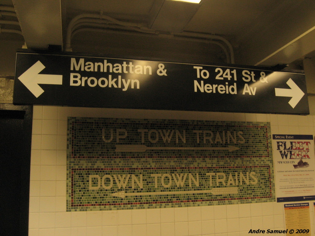 (215k, 1024x768)<br><b>Country:</b> United States<br><b>City:</b> New York<br><b>System:</b> New York City Transit<br><b>Line:</b> IRT White Plains Road Line<br><b>Location:</b> Bronx Park East <br><b>Photo by:</b> Andre Samuel<br><b>Date:</b> 5/25/2009<br><b>Notes:</b> Mosaics in mezzanine.<br><b>Viewed (this week/total):</b> 0 / 1127