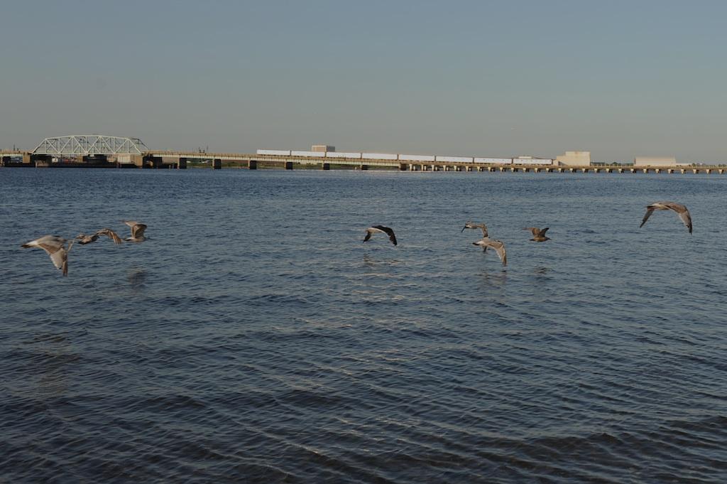 (199k, 1024x681)<br><b>Country:</b> United States<br><b>City:</b> New York<br><b>System:</b> New York City Transit<br><b>Line:</b> IND Rockaway<br><b>Location:</b> North Channel Bridge <br><b>Route:</b> A<br><b>Car:</b> R-44 (St. Louis, 1971-73)  <br><b>Photo by:</b> Richard Panse<br><b>Date:</b> 7/10/2009<br><b>Viewed (this week/total):</b> 3 / 1392